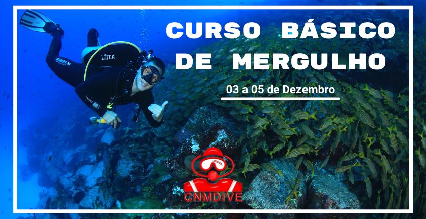 https://www.cnm.com.br/media/user/images/original/curso-basico-de-mergulho-4-a2.png