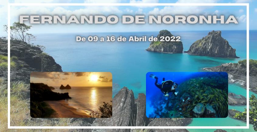 https://www.cnm.com.br/media/user/images/original/fernando-de-noronha-3-l0.png